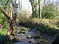River Grom - geograph.org.uk - 694479.jpg