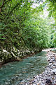 River Mali Rzav and Visocka Banja Spa in Serbia - 4283.NEF 21.jpg