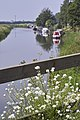 River Nene (old course), March - geograph.org.uk - 660724.jpg