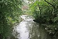 River Tavy from Denham Bridge - geograph.org.uk - 224647.jpg