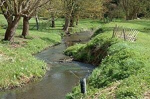 River Ver - River Ver in St Albans