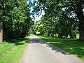 Road past Myton Hall - geograph.org.uk - 525817.jpg