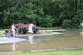 Roman Forest Flooding - 4-18-16 (26514843735).jpg