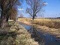 Ros River.jpg