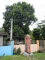 Rosario,SanJuan,Batangasjf7825 05.JPG