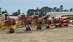 Row of seven Fokker triplane replicas on display.jpg