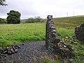 Ruin at Skeagh - geograph.org.uk - 535935.jpg