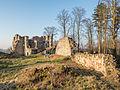Ruine-Rauheneck-270216-2278358.jpg