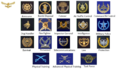 SAAF Mustering and Proficiency badges ver 2.png