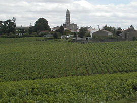 A general view of Saint-Fiacre-sur-Maine