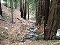 Salinas, CA, USA - panoramio (50).jpg