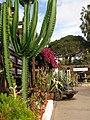 San Diego - Old Town, CA, USA - panoramio (30).jpg