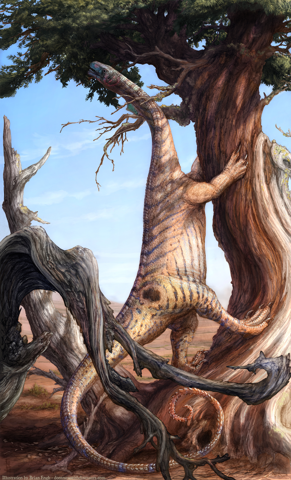 Sarahsaurus restoration