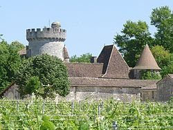 Savignacisle castle.JPG