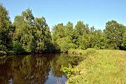 Schleswig-Holstein, Tellingstedt, Landschaftsschutzgebiet Großes Moor Kätner Moor NIK 7108.jpg