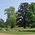 Schlosspark Hemmingen 2013.jpg