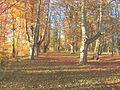Schlosspark Scheer.jpg