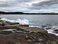 Schoodic Pennisula Schoodic Point (d8aac52f-9f41-4741-9b0c-ad323517e691).jpg