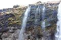 Seljalandsfoss (13957307002).jpg