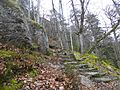 Selva Negra. Baden-Wurtemberg (Alemania). (27675811975).jpg