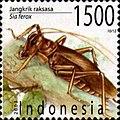 Sia ferox 2003 Indonesia stamp.jpg