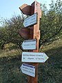 Signs of hiking trails on Nyerges hill. - Tihany Peninsula, Hungary.JPG