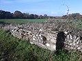 Silchester Roman city walls 48.jpg