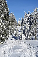 Silesian Beskids - hiking trial to Barania Góra peak 04.jpg
