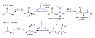 Aldol condensation - The Aldol reaction