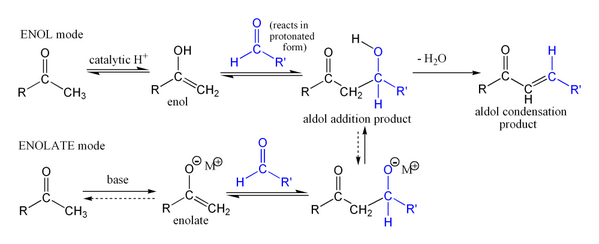 600px-Simple_aldol_reaction.png