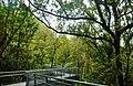 Singapore Southern Ridges Hilltop Walk 09.jpg