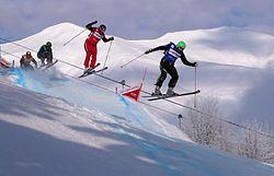 Världscupdeltävlingar i Frankrig, januar 2010