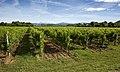 Slovenia! (7467906804).jpg
