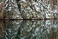 Snowy cliffs at Loddebo 5.jpg