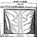 Soul of man illustration, 17th century Wellcome L0007596.jpg