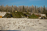 Spartan Brigade Winter FTX 2014 140131-A-ZD229-790.jpg