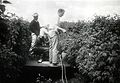 Spraying a red raspberry field, Washington County, circa 1950 (7951549758).jpg