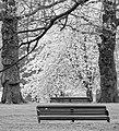 Spring in London (7154059136).jpg