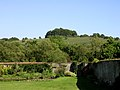 St Catherine's Hill from the walled garden of St Cross Hospital - geograph.org.uk - 46483.jpg