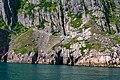St John Harbour Newfoundland (39555092630).jpg