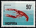 Stamp of Albania - 1968 - Colnect 347639 - Norway Lobster Nephrops norvegicus.jpeg