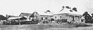 Andrew Petrie - Andrew Petrie's house at the corner of Queen and Wharf Streets, Brisbane, circa 1859