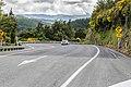 State Highway 6 NZ 09.jpg
