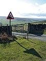 Steep Road To Houlsyke - geograph.org.uk - 372486.jpg