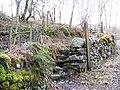 Steps and stile near Little Langdale - geograph.org.uk - 1801484.jpg