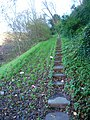 Steps to Undercliff House - geograph.org.uk - 292049.jpg