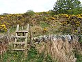 Stile leading to site of ancient chapel - geograph.org.uk - 1313149.jpg