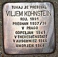 Stolperstein für Viljem Kohnstein.JPG