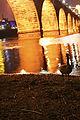 Stone Arch Bridge (467193916).jpg