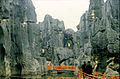 Stone forest 1983-7.jpg